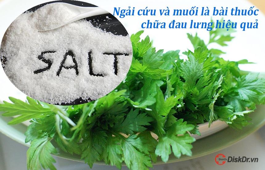 Ngải cứu và muối là một trong những bài thuốc chữa đau lưng hiệu quả