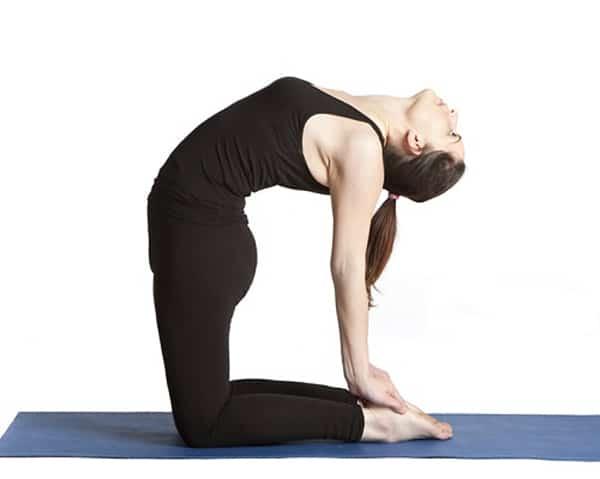 Điều trị đau lưng bằng bài tập tư thế rắn lạc đà
