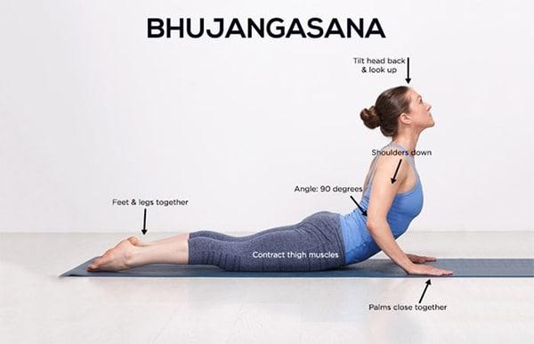 Các bài tập yoga mang đến hiệu quả cao cho hệ xương khớp