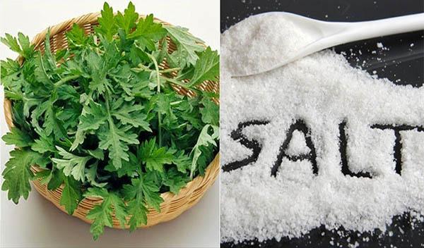 Bài thuốc chữa thoát vị đĩa đệm từ ngải cứu và muối