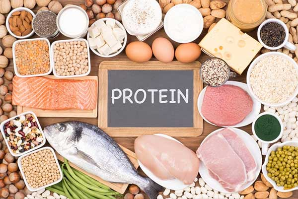 Thịt, cá, trứng, các loại đậu là nguồn thực phẩm giàu protein
